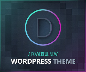 Web Design Divi WordPress Theme