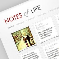 New Theme: DailyNotes