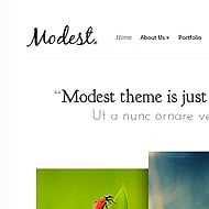 New Theme: Modest