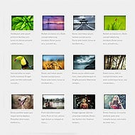 Portfolio Template Added to All Themes