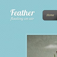 Theme Sneak Peek: Feather