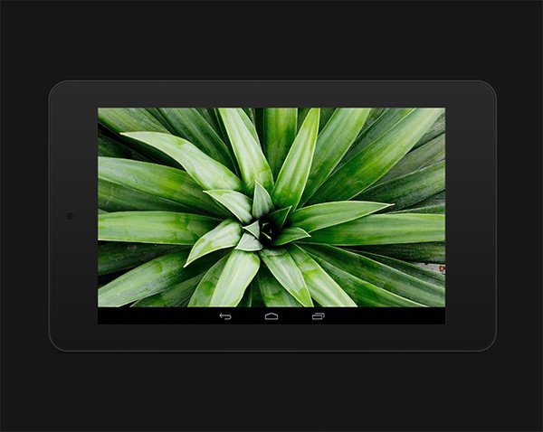 Nexus7-ex5