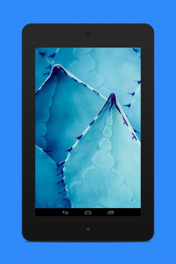 Nexus7-ex7