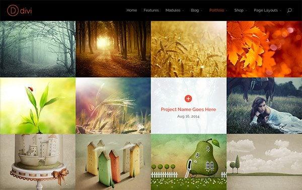 Fullwidth Portfolio and Gallery