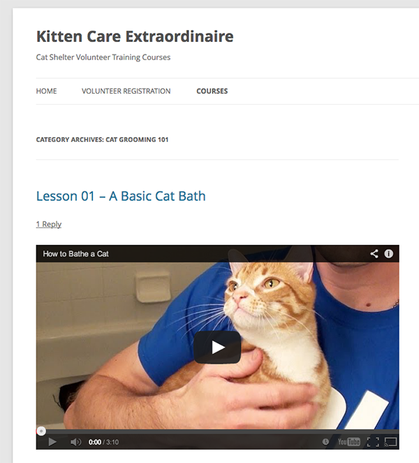WordPress-LMS-Basic-Lesson-01