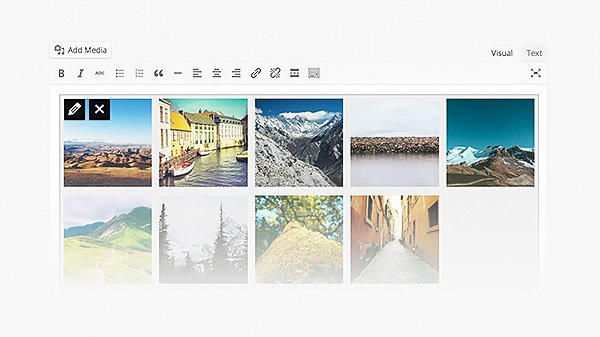 wordpress-39-gallery-previews