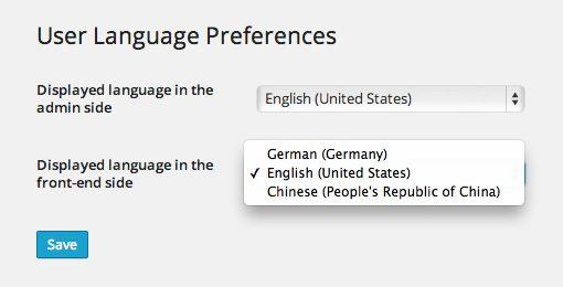 User Language Switch