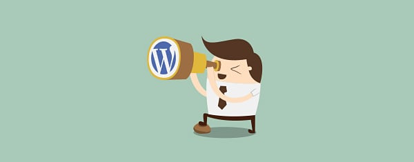 Where To Find A WordPress Developer When You Need A Custom Website