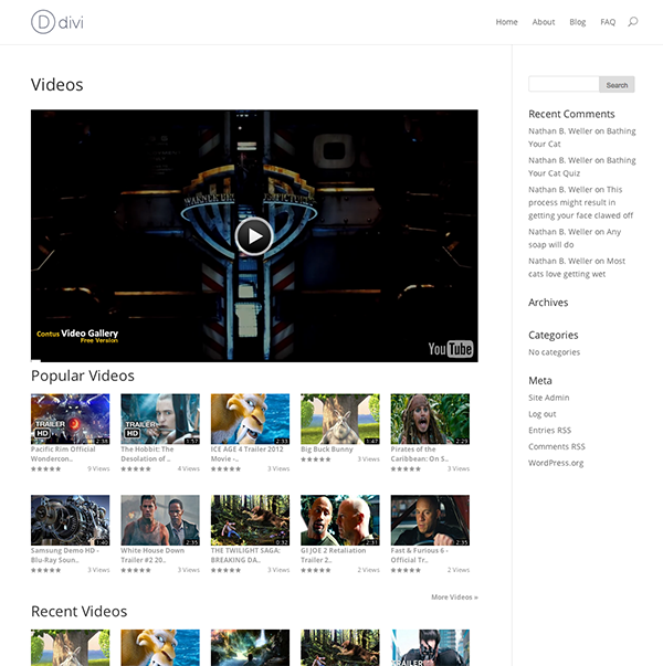 Easily Create A Video Gallery Using WordPress Plugins