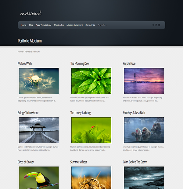 Easily create a video gallery using wordpress plugins for Create blog page template wordpress