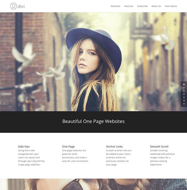 single-page-website-divi