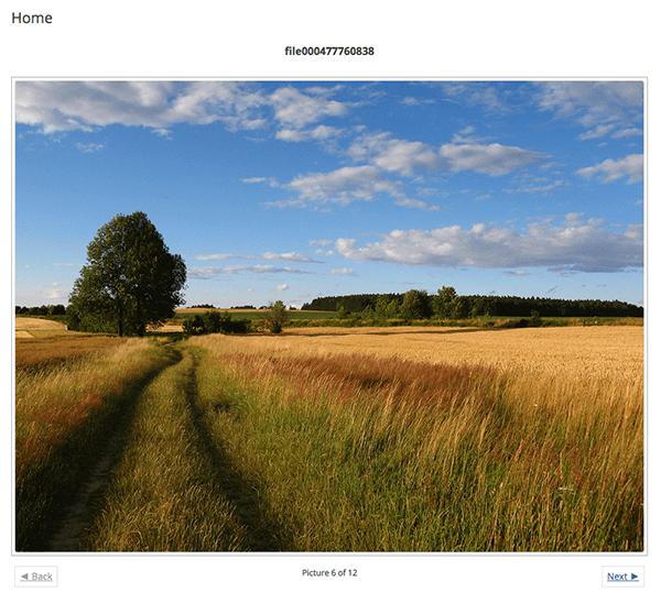 NextGEN-Front-End-Imagebrowse