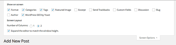 wordpress-editor-screen-options