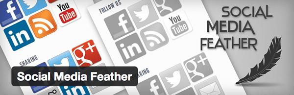 Social-Media-Feather