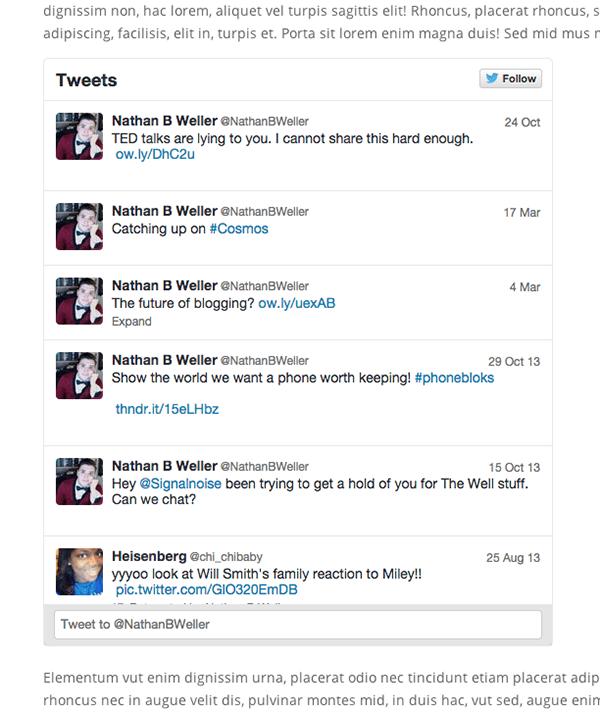 Twitter-Widget-Example