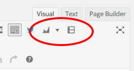 reviewer-wordpress-visual-editor-buttons