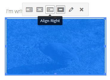 A Look At The Upcoming WordPress Front-End Editor - Adding images