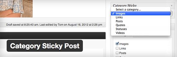 Category-Sticky-Post
