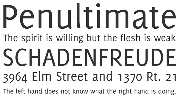 The 41 Best Free Web Fonts For 2015