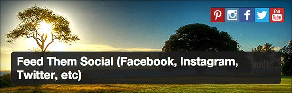 WordPress-Social-Feed-Feed-Them-Social