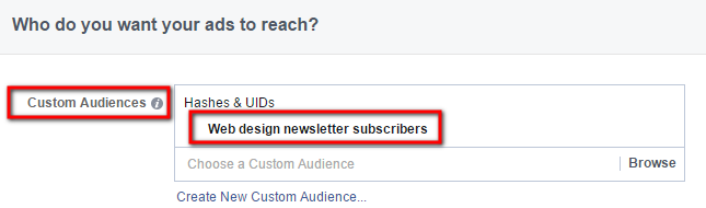 Custom Audience Set With Facebook Ads