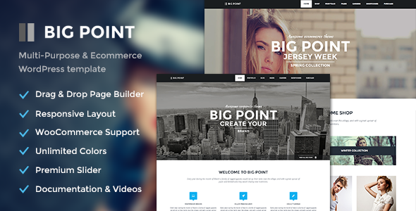 BigPoint: A WooCommerce theme for wordpress