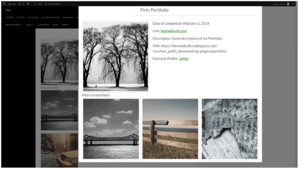How to Build Your Personal Branding Using WordPress - portfolio 2