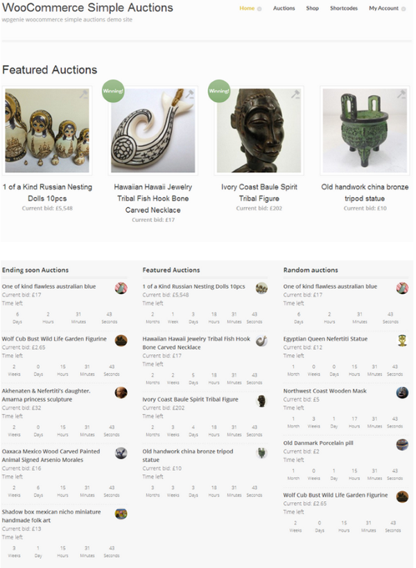 How to Build an Auction Site on WordPress - WooCommerce Simple Auctions 2