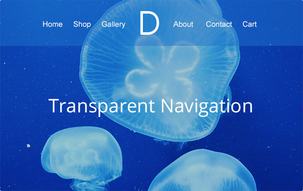 divi-2-4-transparentnav