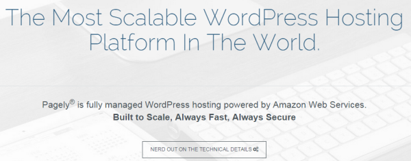 Wordpress with SaaS - Pagely
