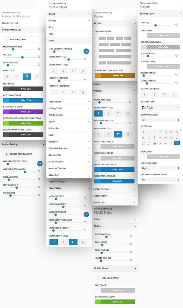 divi-2-4_theme_customizer