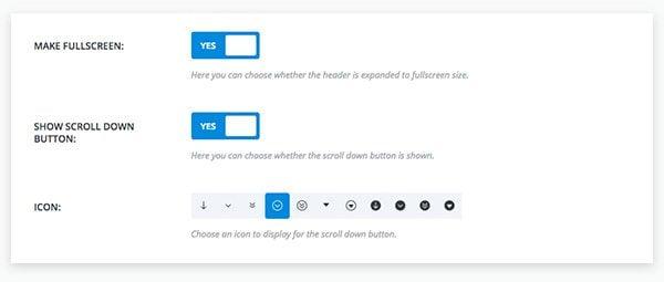 fullscreen-header-settings