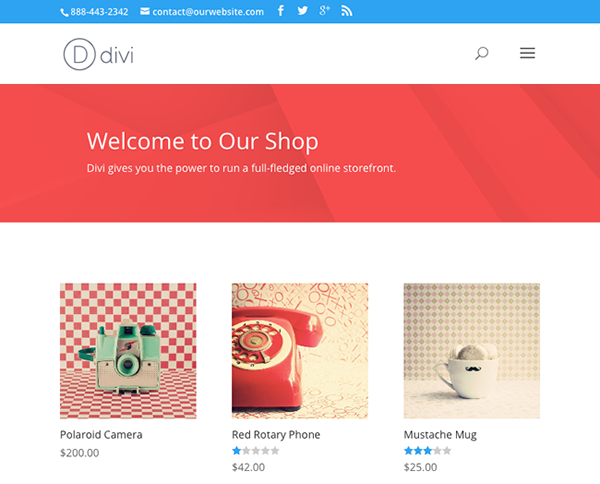 eCommerce Store built with Divi