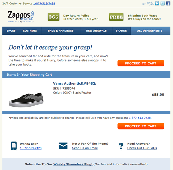 Zappos Abandoned Cart Email