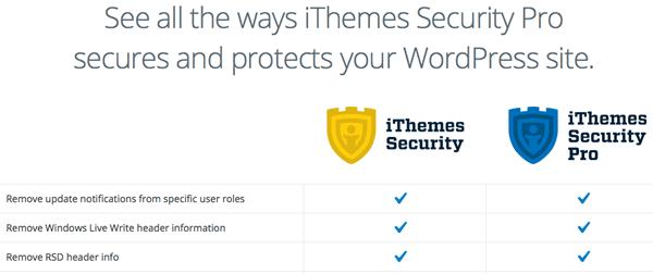 iThemes Secutiry