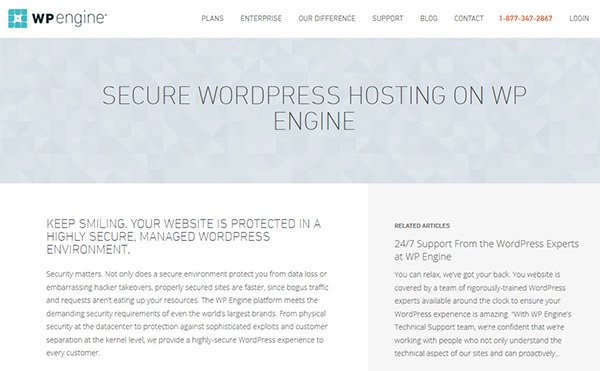Managed Hosts like WP Engine offer comprehensive security features.