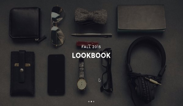the-look-wordpress-theme