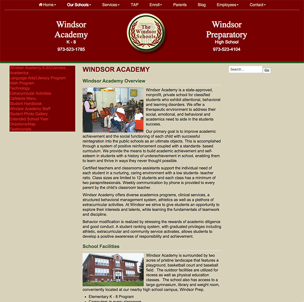 Divi-Site-Makeover-Windsor-Academy-BEFORE