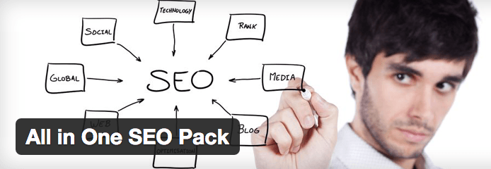 All in One SEO plugin.