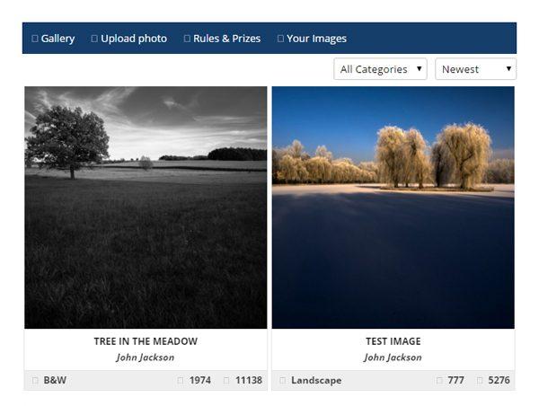 Photo Contest WordPress plugin.