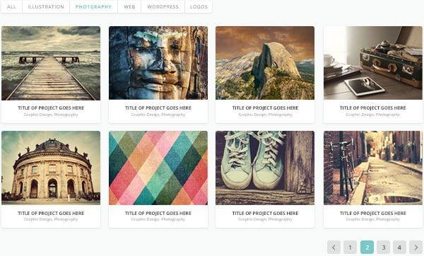 portfolio-category