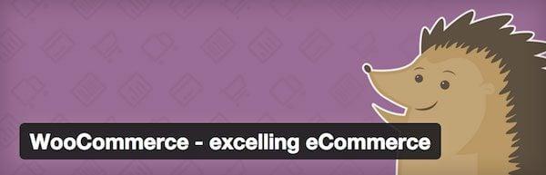 E-Commerce Tips Best Plugin