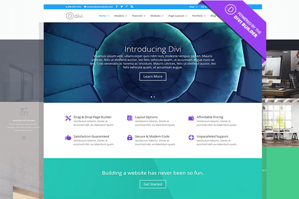A screenshot of the Divi theme.
