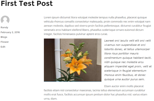 CMS2CMS Blogger to WordPress Converter results