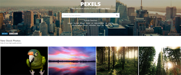 A screenshot from the Pexels homepage.