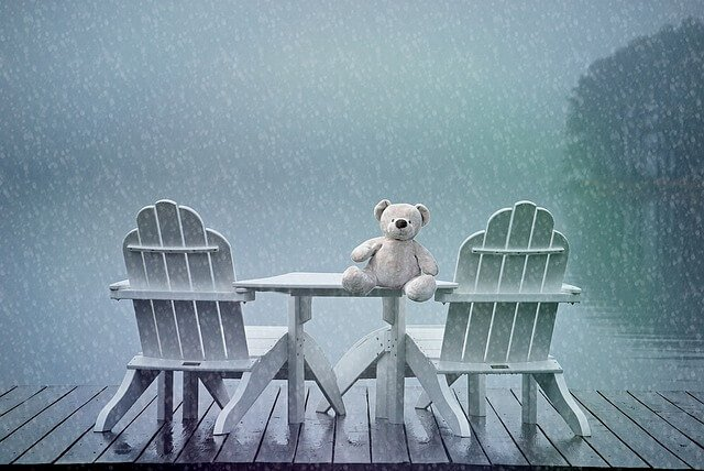 Teddy on table in rain