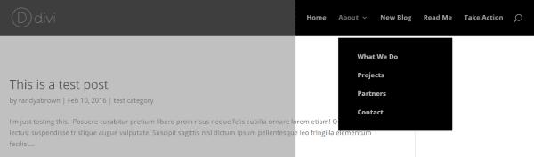 wordpress menu result