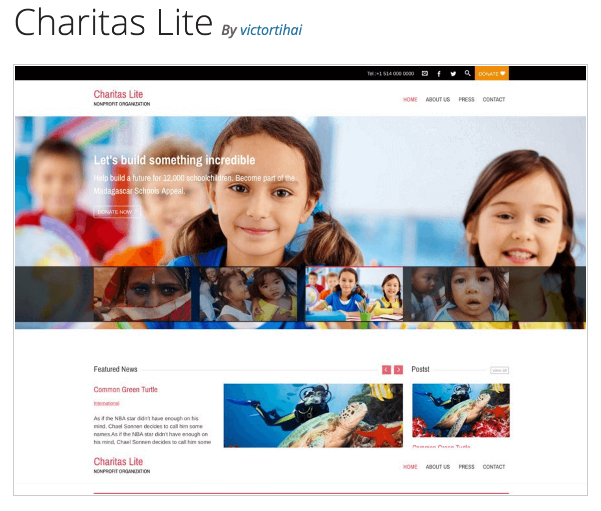 The Charitas Lite theme