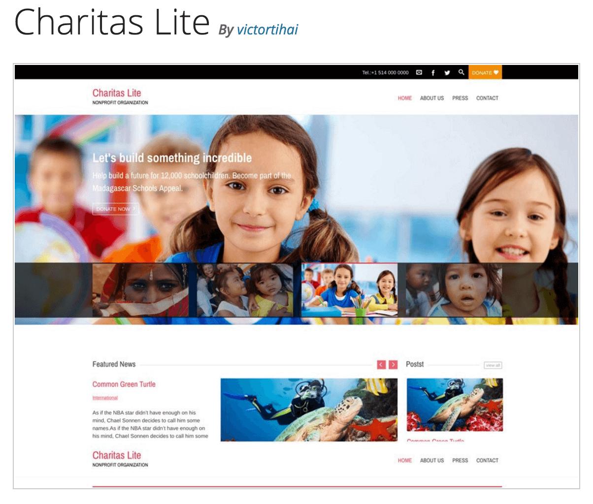 The Charitas Lite theme