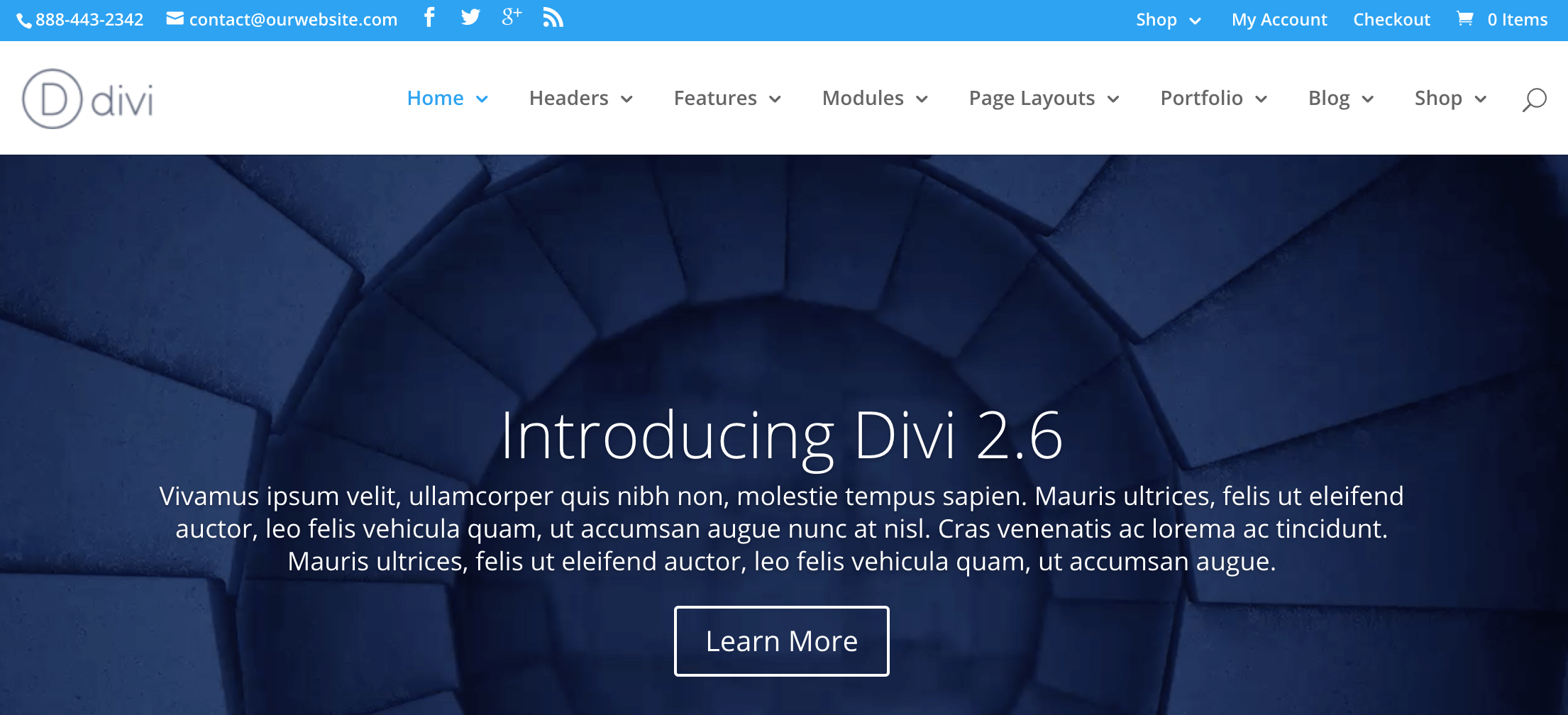 A screenshot of the Divi theme.
